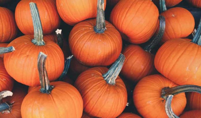 10 foods that will make you feel beautiful and healthy in autumn