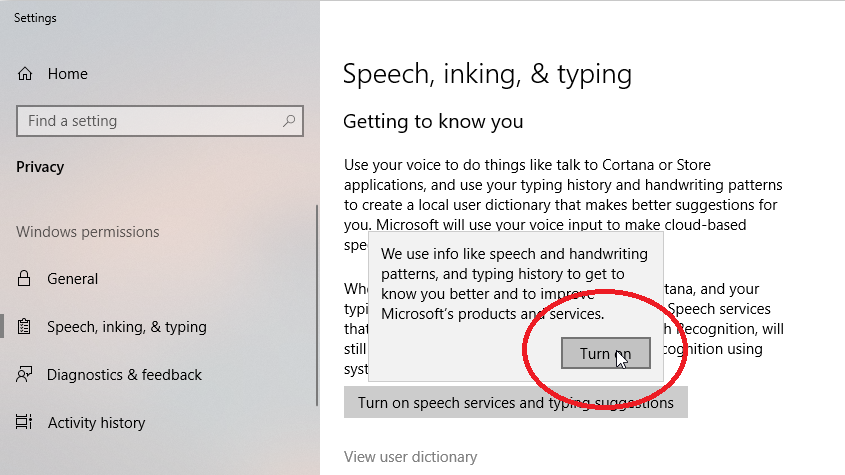 Enable Speech Services