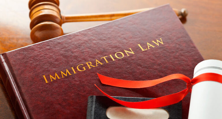 What Are the New Immigration Laws in 2021?